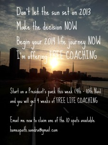 Life Coaching Offer November 2013