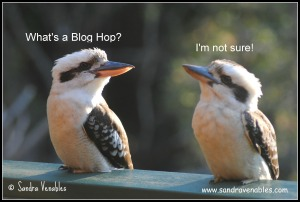 What's a blog hop