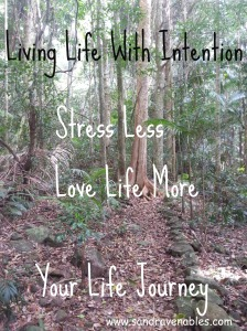 Aromatherapy Blend Stress Less