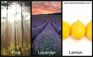 Immune system, essential oils, aromatherapy