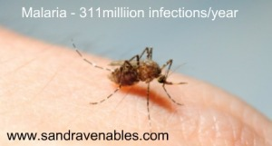 Malaria, homeopathic treatment